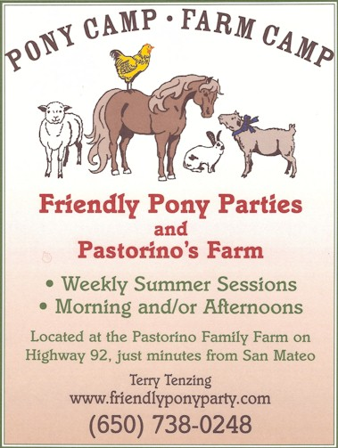 friendly pony parties our flyer